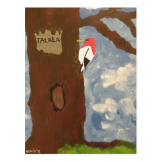 Talala Red-Headed Woodpecker Postcard