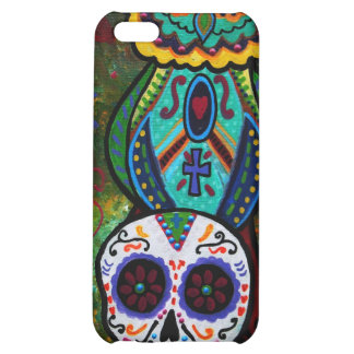 TALAVERA SKULL AND OWL iPhone 5C COVER