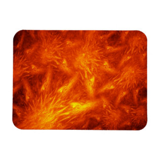 Tale of Chief Many Suns Rectangular Photo Magnet