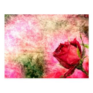 Talk rose postcard