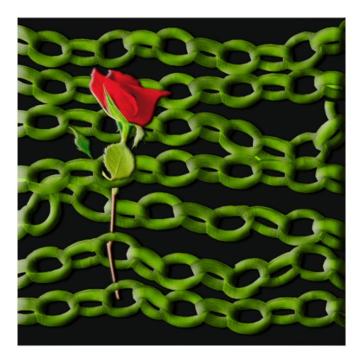 Talk rose saved with green chains posters