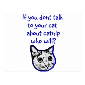 Talk to your cat about catnip postcard