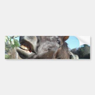 Talking Brown Horse Bumper Sticker