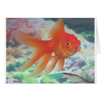 Talking Goldfish Greeting Card