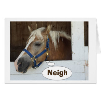 TALKING HORSE SAY NEIGH-YOU ARE HOW OLD? GREETING CARD