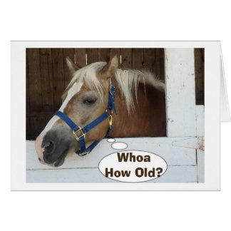 "TALKING HORSE SAY WHOA ""HOW OLD"" BIRTHDAY GREETING CARD"