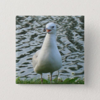 Talking Seagull 15 Cm Square Badge