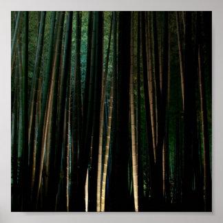 Tall Bamboo at Night. Poster
