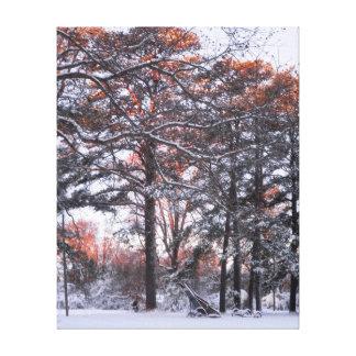 Tall Pine Trees Snow Sunrise Winter Photo Canvas Canvas Print