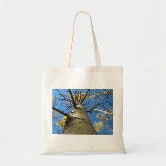 Tall Quaking Aspen Tree Tote Bag