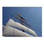 Tall Ship Sails Postcard