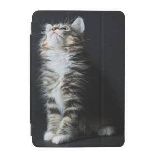 Tall Tabby iPad Mini Cover