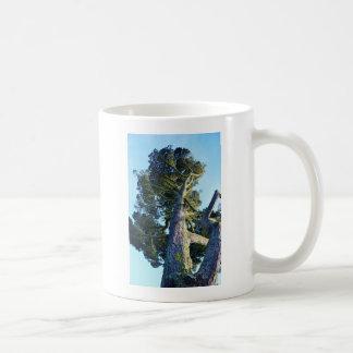 Tall Tree Coffee Mug