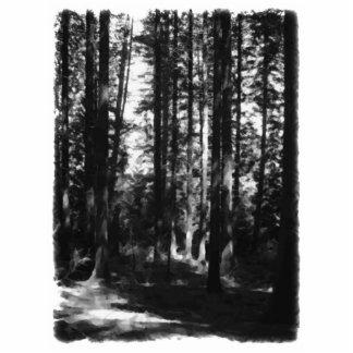 Tall Trees in Black and White Cut Outs