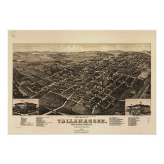 Tallahassee Florida 1885 Antique Panoramic Map Poster