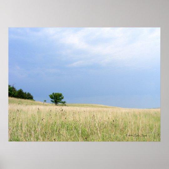 Tallgrass Prairie Preserve Poster