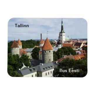 Tallinn Magnet - Old Town
