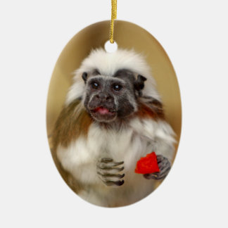 Tamarin Cotton Top monkey ornament, gift Christmas Ornament