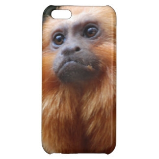 Tamarin Monkey iPhone 5C Case