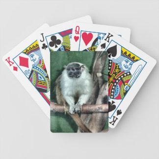 Tamarin Monkey Playing Cards