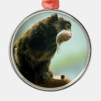Tamarin Monkey Silver-Colored Round Decoration