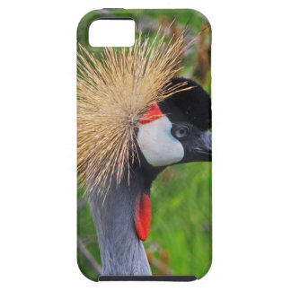 Tame a Wild Bride Case For The iPhone 5