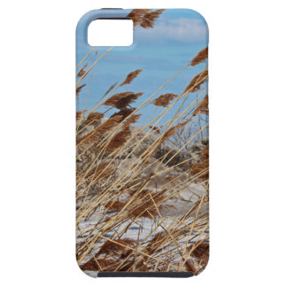 Tame a Wild Wind-horizontal iPhone 5 Cases