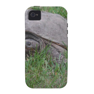 Tame Snapper Turtle Case-Mate iPhone 4 Covers