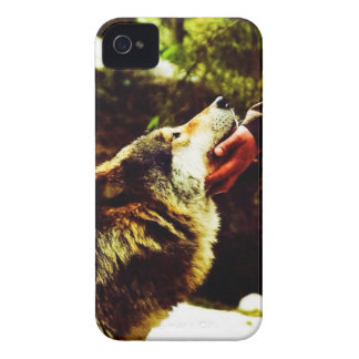 Tamed Wolf iPhone 4 Case