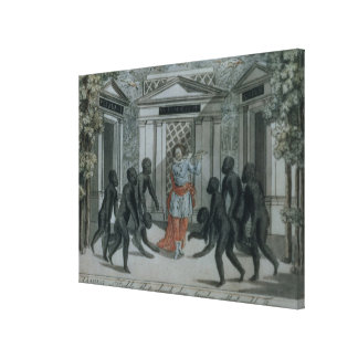 Tamino plays the magic flute gallery wrapped canvas