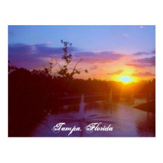 Tampa Florida Postcard