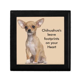 Tan and White Chihuahua Gift Box