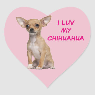 Tan and White Chihuahua Heart Sticker