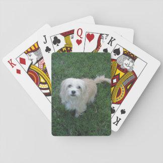 "Tan ""Benji"" Type Mutt on Grass Playing Cards"