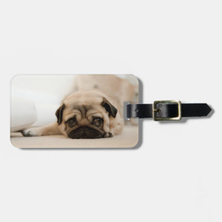 Tan Female Pug Luggage Tag