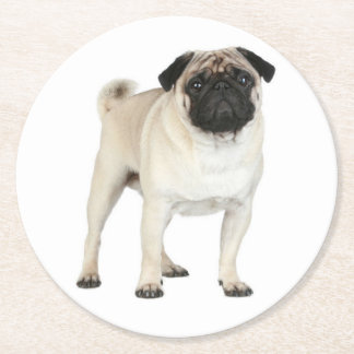 Tan Pug Puppy Dog Canine Paper Drink Coasters