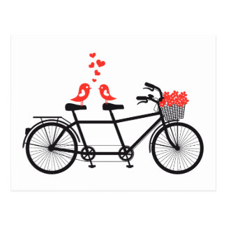 tandem bicycle with cute love birds post card