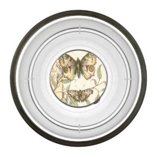 Tandem Butterflies Over Green Leaves
