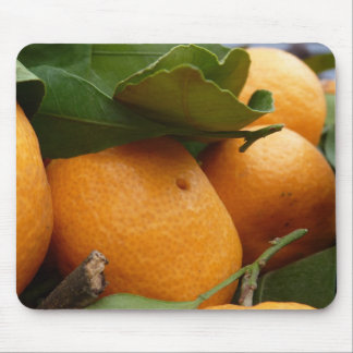 Tangerines Mouse Pad