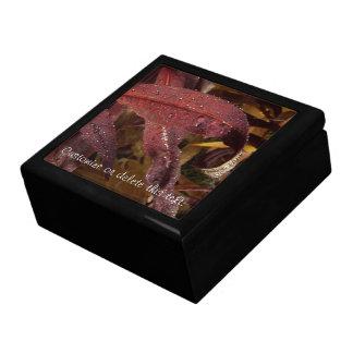 Tangled Flora Customizable Trinket Boxes