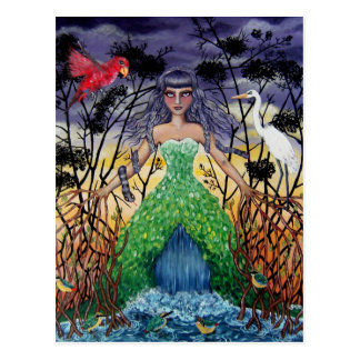 Tangled in the Mangroves Postcard
