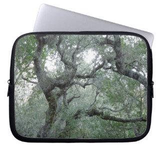 Tangled Oak Trees in Paso Robles California Laptop Computer Sleeve