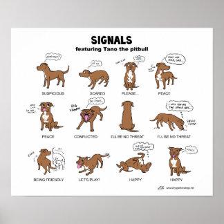 TANO Signals Poster