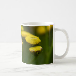 Tansy Rainfarn Coffee Mugs