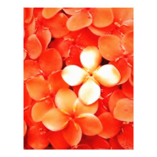 Tantalizing Tangerine Orange Blossoms Nature Flora Custom Flyer