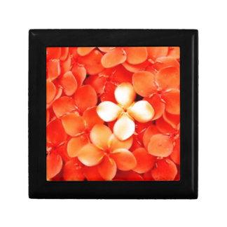 Tantalizing Tangerine Orange Blossoms Nature Flora Trinket Boxes