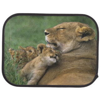 Tanzania, Ngorongoro Crater. African lion mother Car Mat