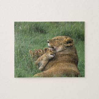Tanzania, Ngorongoro Crater. African lion mother Jigsaw Puzzle