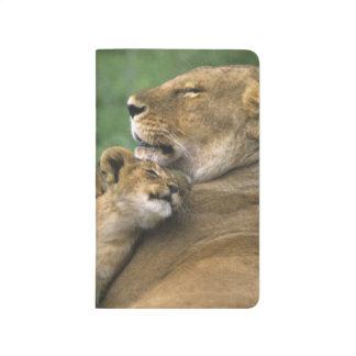 Tanzania, Ngorongoro Crater. African lion mother Journal