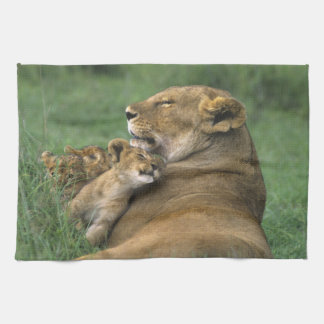 Tanzania, Ngorongoro Crater. African lion mother Tea Towel